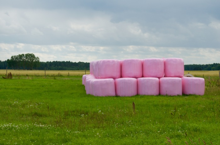 The pink wraps are for the bails of hay and designate that some of the money goes to Cancer research!