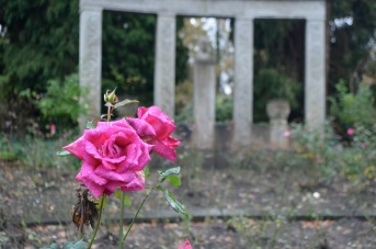 rose garden with the monument for the first cemetery director/ architect